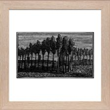 Little Poplars - Ready Framed